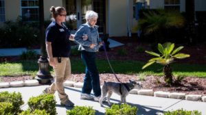 Staff and senior woman walking pet